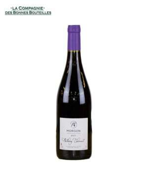 Vin Rouge Morgon Domaine Anthony Thevenet Morgon 75 cl